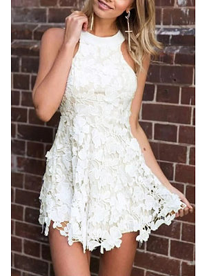 Halter Backless Hollow Out Fitted Lace Dress